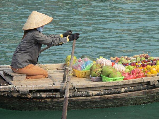SkinOwl in Vietnam